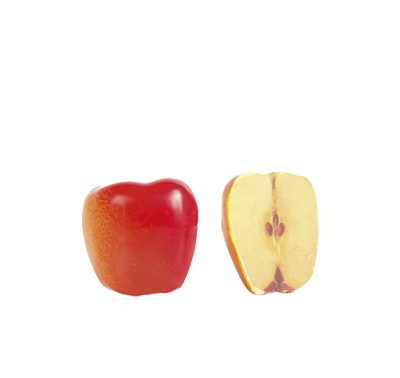 קישוט שוקולד - תפוח