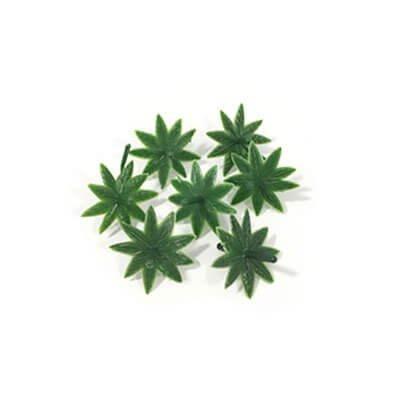עלה-ירוק-3